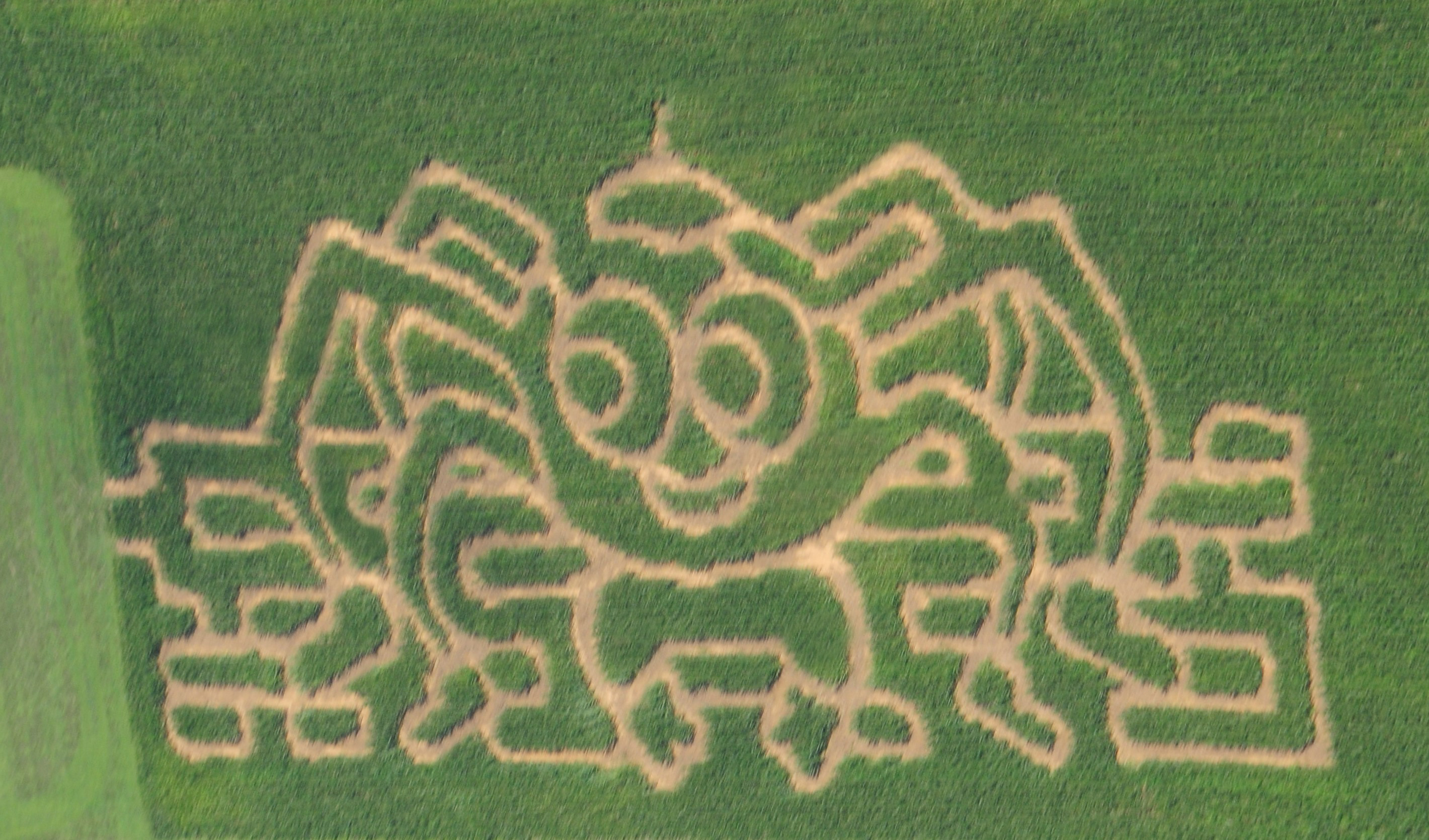 Kids Corn Maze & Play Area ...